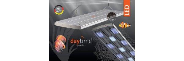 Daytime Pendix