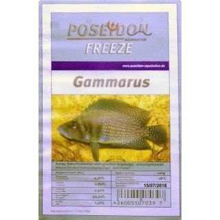 Poseidon Freeze Gammarus (Bachflohkrebse) 100g Blister 10x100g