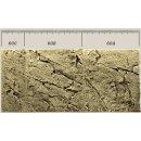 Slim Line Rückwand 60C Sand L: 20 x H: 55 cm