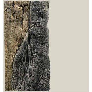 Slim Line Rückwand 50C Amazonas L: 20 x H: 45 cm