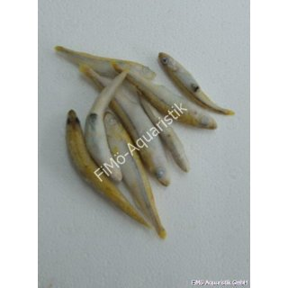 Stinte kleine Fische 100g Beutel